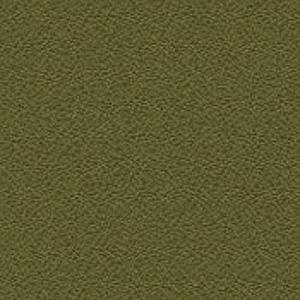 Perennial - 5826 - Fennel