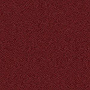 Perennial - 5828 - Zinnia